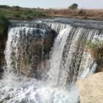 Cairo Airport Layover Tour to Fayoum Oasis & Wadi Al Rian