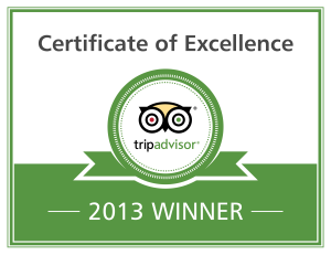 Excellence-Badge_2013_en-300x231